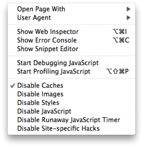 Safari 4's Develop Menu.